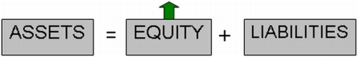 Profit goes to Equity