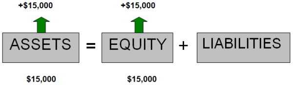 Owner's equity - investment in business